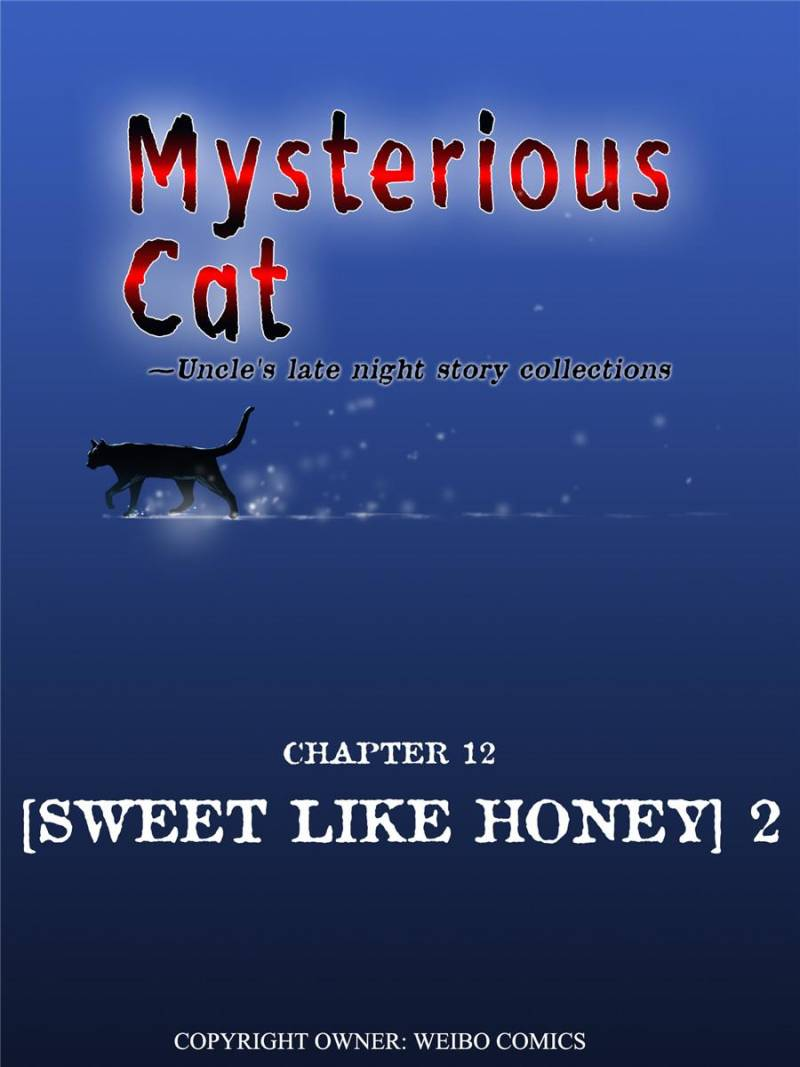 Mysteries Cat: Uncle's Late Night Story Collections - chapter 13-eng-li
